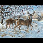Winter Deer - Large Piece
