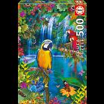 Bird Tropical Land