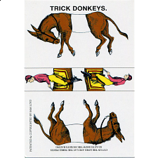Trick Donkeys - Mini -