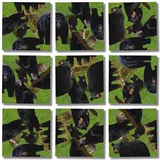 Scramble Squares - Black Bears -