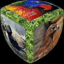 V-CUBE 2 Pillow (2x2x2): Unique Birds -