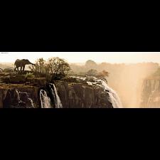 AVH Panorama: Elephant -