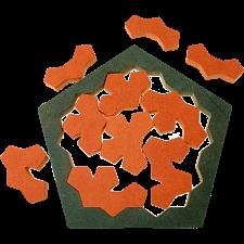 The Pentagon Tiles -