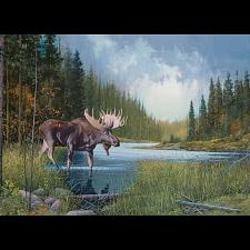 Moose Lake -