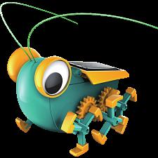 Solar Bug -