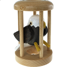 American Eagle in a Cage -