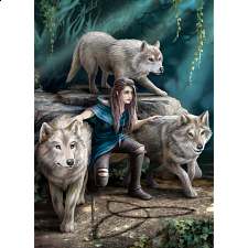The Power of Three - Anne Stokes -