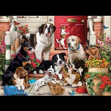 A Dog's Life -