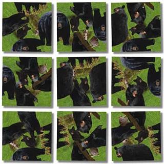 Scramble Squares - Black Bears