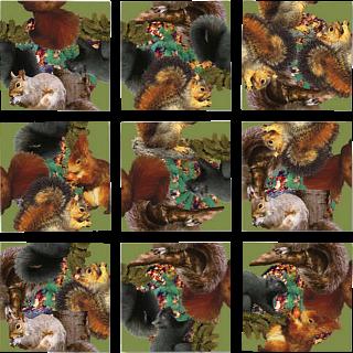 Scramble Squares - Squirrels