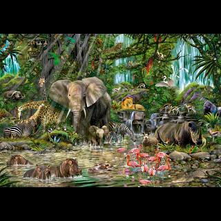 African Jungle