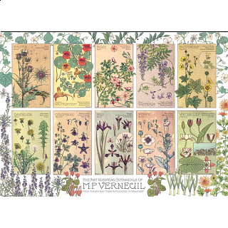 Botanicals By Verneuil