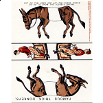 Famous Trick Donkeys - Postcard