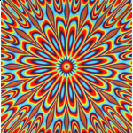 Optical Illusion Jigsaw 11