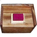 Melting Blocks Puzzle (Redstone Box)