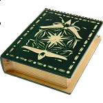 Romanian Secret Book Box - Green