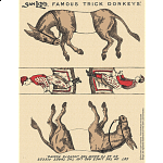 Famous Trick Donkeys - Color - Micro