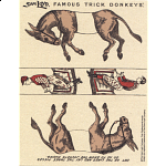 Famous Trick Donkeys - Color Puzzle Master Logo