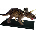 4D Vision - Triceratops Anatomy Model