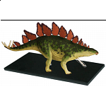 4D Vision - Stegosaurus Anatomy Model