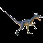 4D Vision - Deluxe Velociraptor Anatomy Model