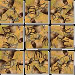Scramble Squares - Elk