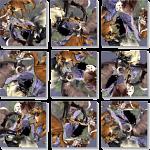 Scramble Squares - Rocky Mountain Wildlife