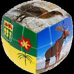 V-CUBE 3 Pillow (3x3x3): Saskatchewan