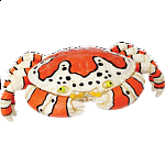 4D Puzzle - Clown Crab