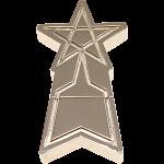 SSSP Emblem Shooting Star