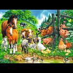 Animal Get Together