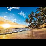 Tropical Sunrise