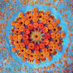 Danmala: Orange