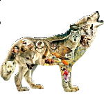 Native American Wolf - Shaped Jigsaw Puzzle