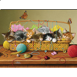 Basket Case - Family Pieces