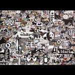 Black & White: Animals