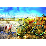 Bike in the Dunes