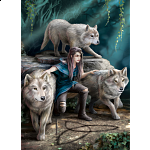 The Power of Three - Anne Stokes