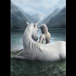 Unicorn Connection - Anne Stokes