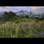 AVH Edition: Tatoosh Mountains