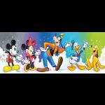 Disney Panoramic: Fab 5