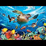 Undersea Glow: Journey of the Sea Turtles