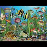 Aquarium -  Large Piece