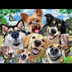 Selfies: Dog Delight