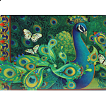 Paisley Peacock - David Galchutt