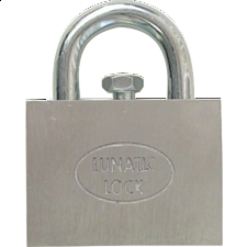 Lunatic Lock - Wire & Metal Puzzles