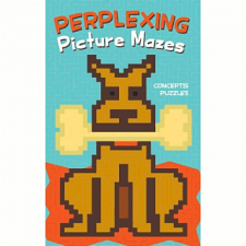 Perplexing Picture Mazes - book