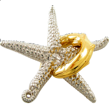 Cast Starfish -