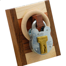 Schloss mit Holz (Lock with Wood) - Jean Claude Constantin