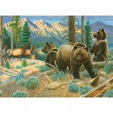 Wildlife Masters - Sharing the High Country - 1000 Pieces